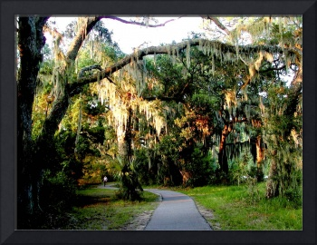 Walking the BikeTrail on Jekyll Island