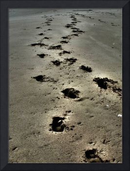 Footprints In The Sand Landscape Photograph