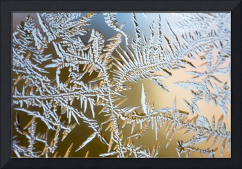 frost patterns 2