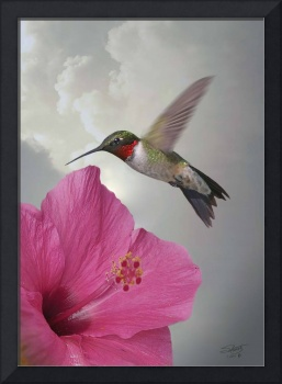 Hibiscus and Hummingbird