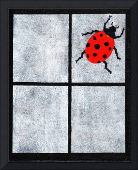 Ladybug on glass