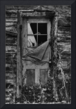 Old Cabin Door in Black and White by Jim Crotty