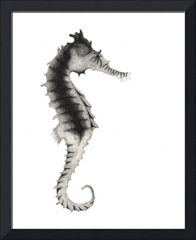 Stippled Illustration Of A Seahorse