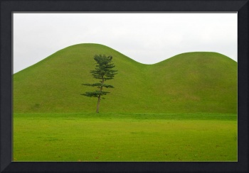 Hill tombs and tree, Korea