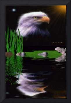 Eagle Reflections