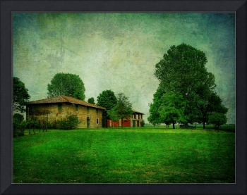 country house and big tree