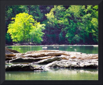 Shoals on the Chattahoochee