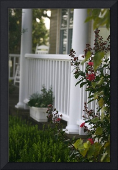 Southern Summer Flowers and Porch