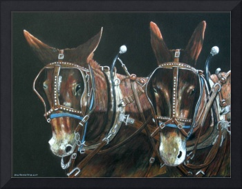 Ready to pull-mules
