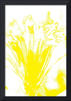 Yellow flower sketch