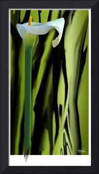 Cheryl Daniels - Abstract Calla Lily