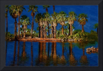 Palm Trees On The Water