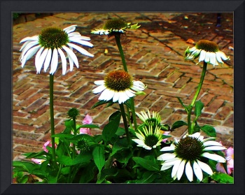 Bayou Bend Gardens - flowers and plants2