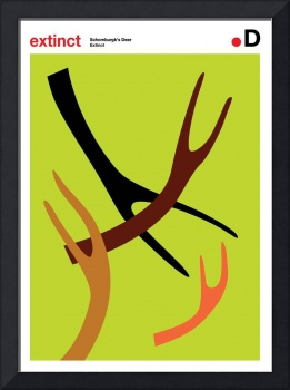 Extinction Series - D (Schomburgk's Deer)
