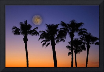 Tropical Full Moon Sunset