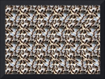 Ant Hill Stereogram