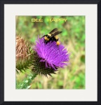 Bee Happy poster by Jacque Alameddine
