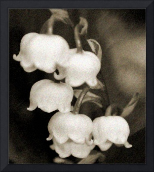 Vintage Lily of the Valley