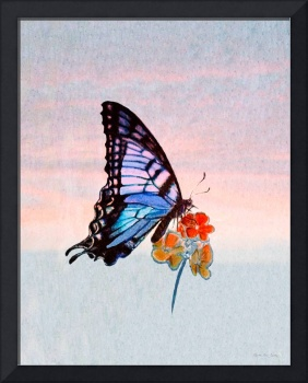 Decorative Butterfly 4111016