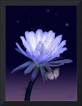Cactus Night Flower