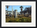 Galveston Graveyard by Manda Malice