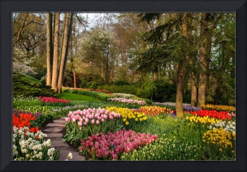 Colorful World of Keukenhof. Flower Power