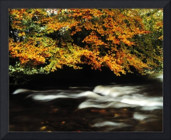 Fast Flowing Water And Fall Colours