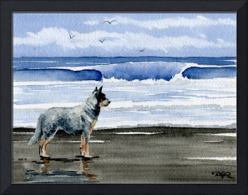 Australian Cattle Dog Beach
