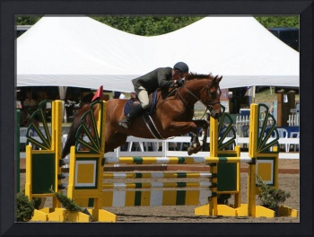 Rider Jumping Oxer