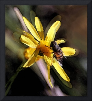 WATERCOLOR,  FLOWER WITH BEE