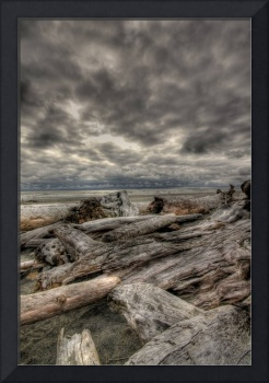 Driftwood HDR