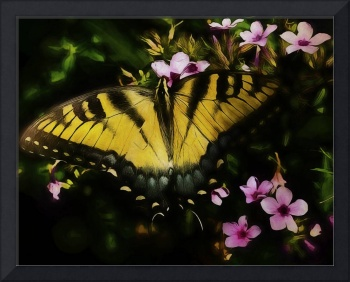 Butterfly In The Garden Of Earthly Delights
