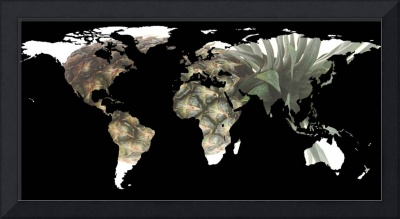 World Map Silhouette - Pineapple