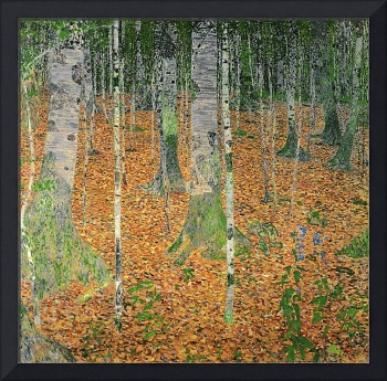 The Birch Wood, 1903, by Gustav Klimt