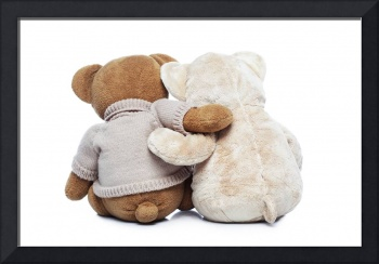 Back view of two Teddy bears