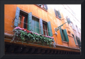 Floral Window in Florence, Italy