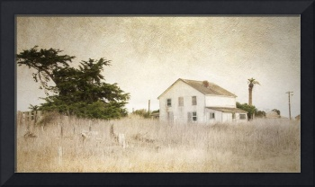 Point Reyes Farmhouse with Texture