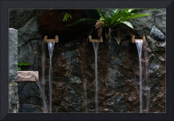 Water fountain , Singapore Botanic Garden