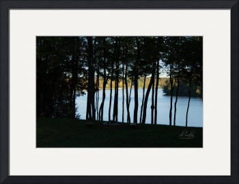 Lakeview Through the Trees by D. Brent Walton