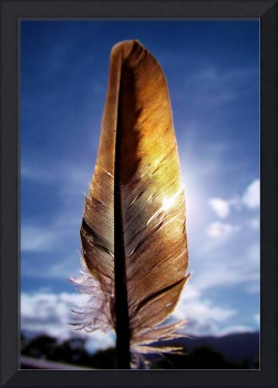 Feather in the sky 2