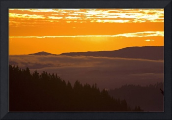 Sunrise, Willamette Valley, Oregon, USA