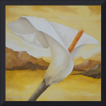 Calla Lily in yellow desert