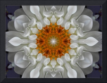 White Golden Flower Mandala