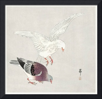Two Pigeons by Ohara Koson