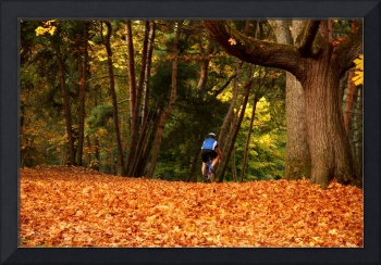 Cyclist in Park in Autumn