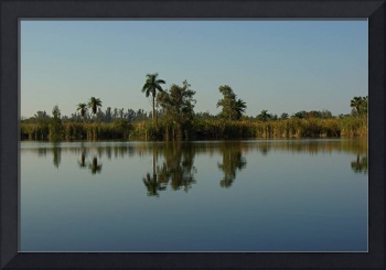 Early morning at a lake in Ft.Myers, Florida