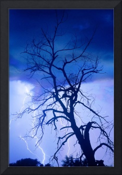 Lightning Tree Silhouette Portrait