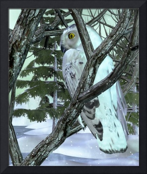 Into The Woods Snowy Owl