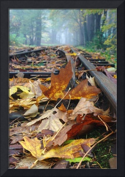 Rails and Leaves