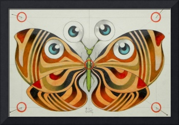 four eyes butterfly